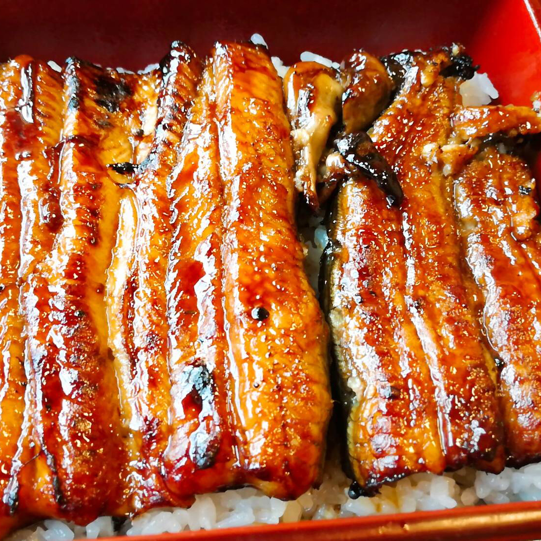 羽生市の美味しいうなぎ屋『魚徳』は予約を取って行くのが良し!