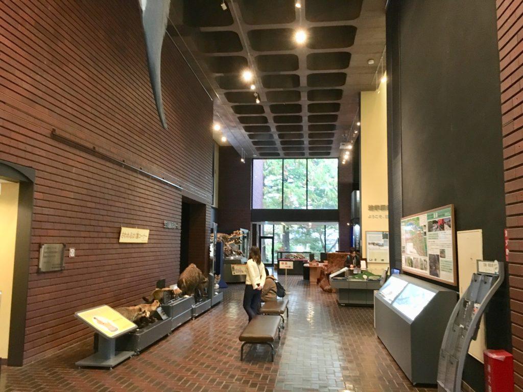 埼玉県立自然の博物館の内観