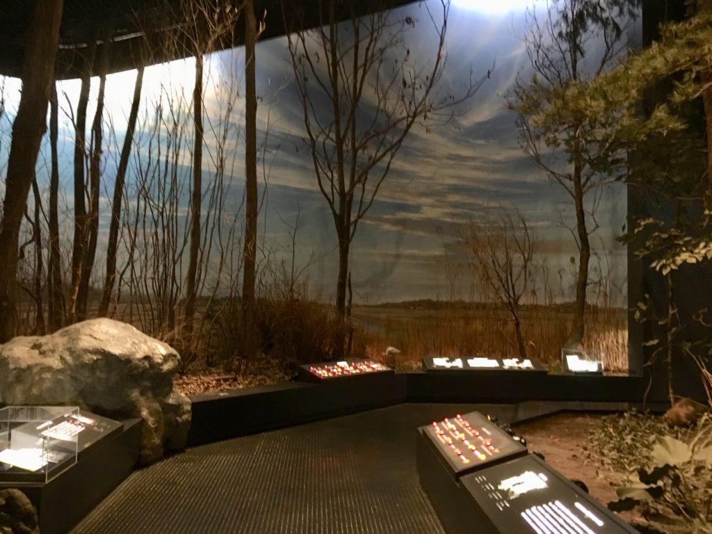 生物展示ホール