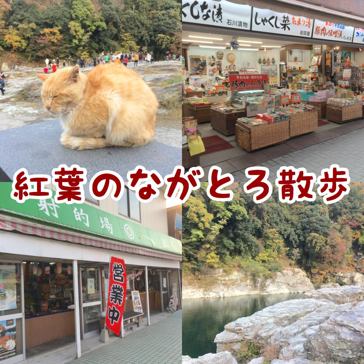【紅葉の長瀞散歩】長瀞駅から商店街を抜けて岩畳まで散策しよう!