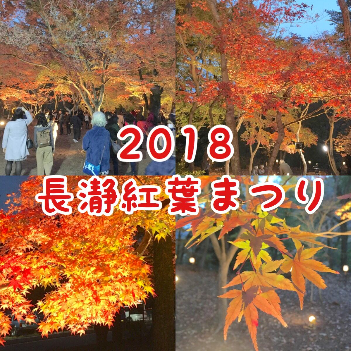 長瀞紅葉まつり2018ライトアップレポ 見頃・アクセス・駐車場を紹介!