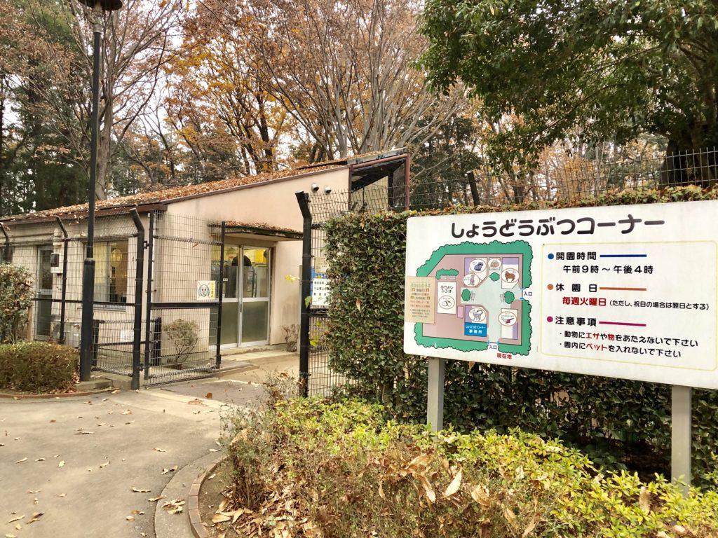 上尾丸山公園の小動物コーナー