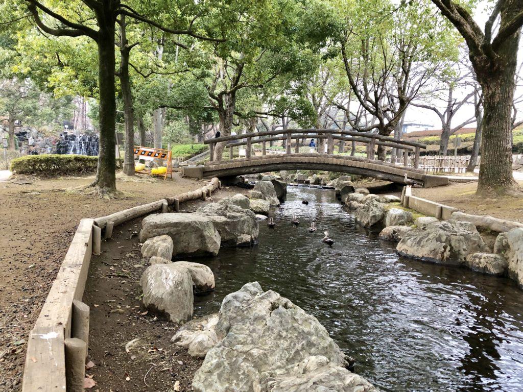 上尾丸山公園の人工的な川