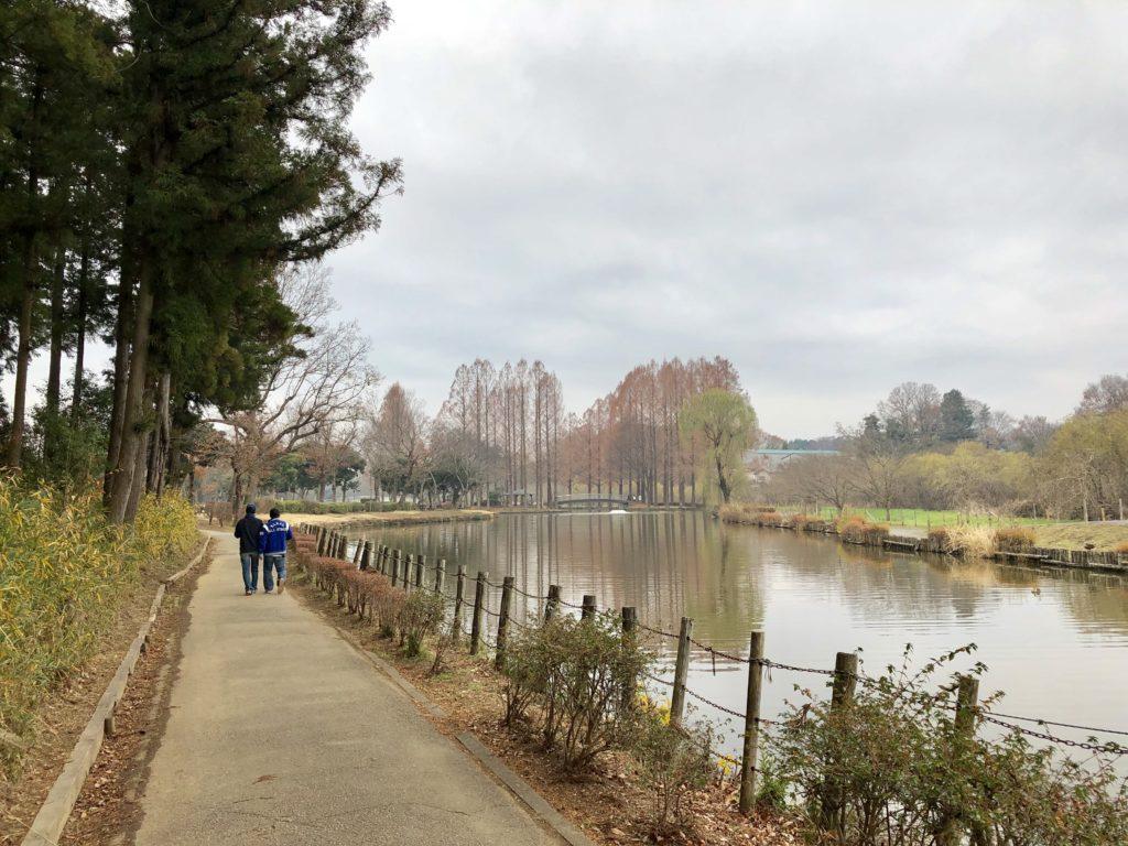 丸山公園の大池