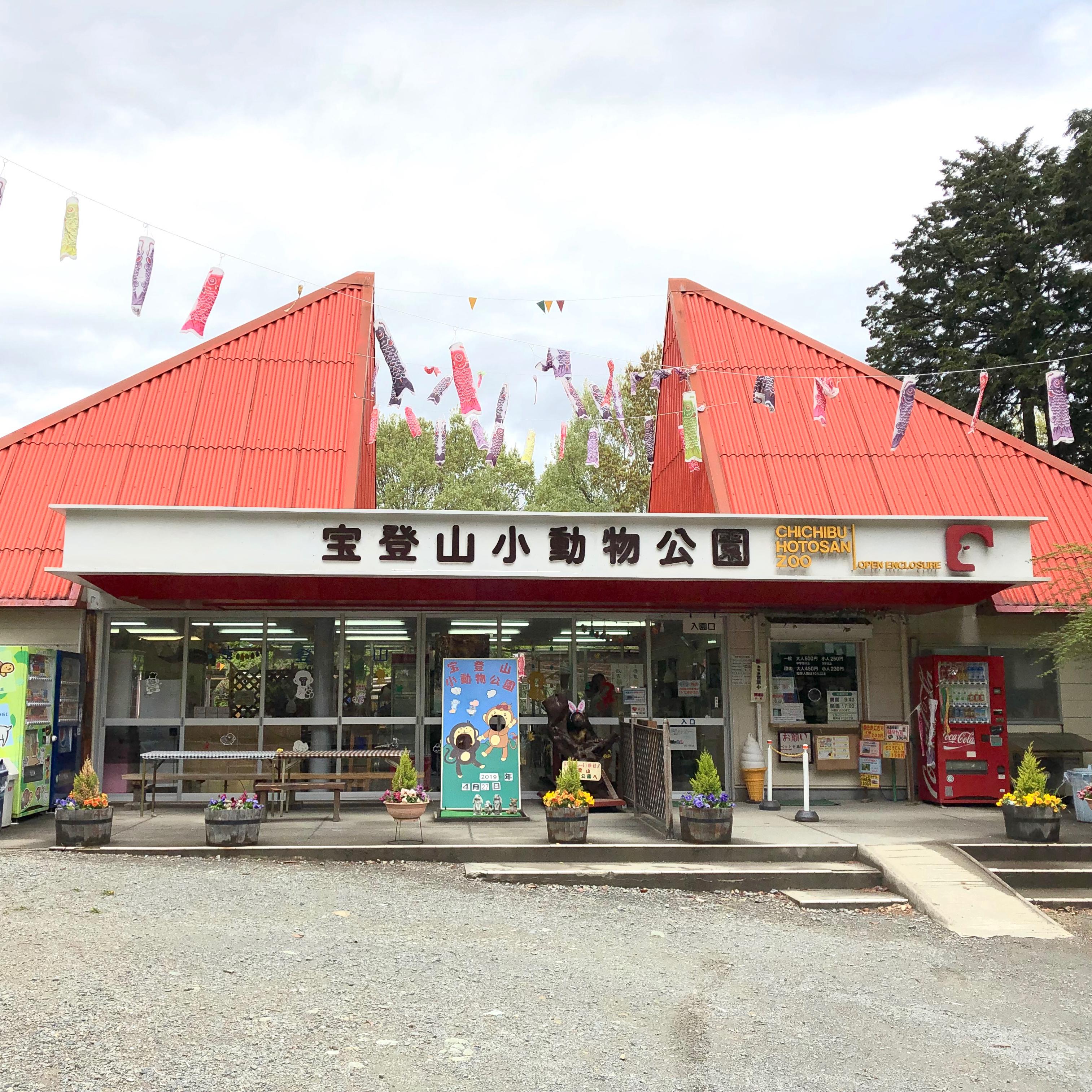 宝登山小動物公園|猿の餌やり体験が楽しい!混雑しない長瀞観光の穴場スポット